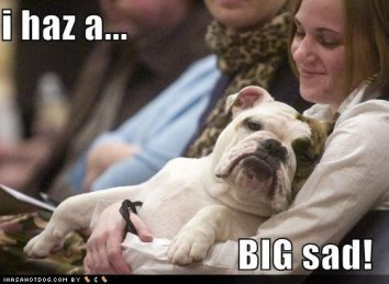 funny-dog-pictures-big-sad